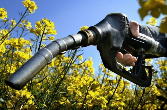 біопаливо паливо заправка